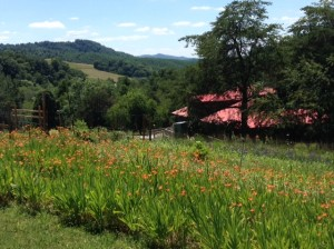 Blooming gardens and mountain views above the clinic make for a beautiful vista